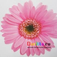 Наклейка на стену Розовые цветочки